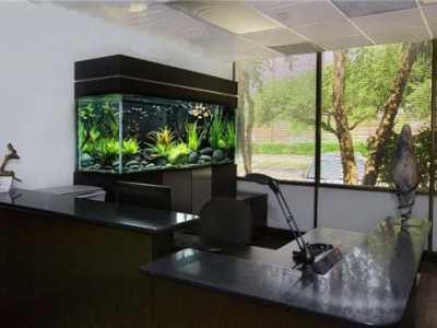 办公室鱼缸风水 办公室鱼缸摆放位置风水禁忌